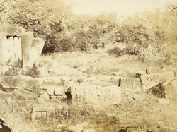 Sculpture fragments on site at Sanchi Tope 1000121342